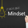 Opleiding-zakelijke-mindset